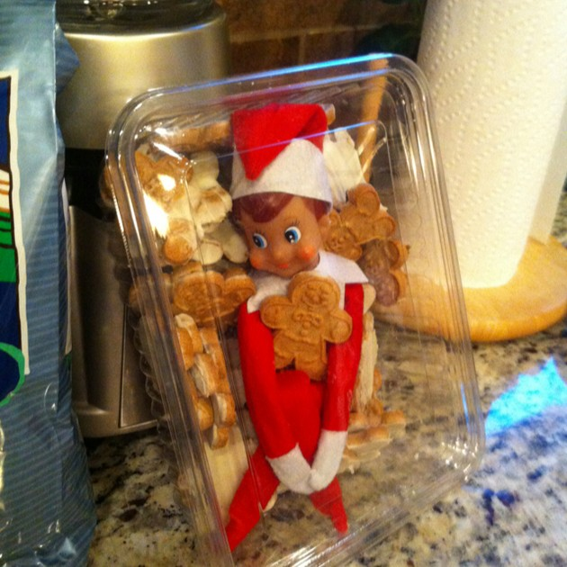 Funny ideas for Elf on the Shelf each night this Christmas.