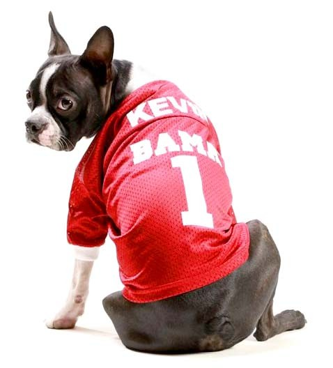 Alabama Crimson Tide Apparel for Dogs