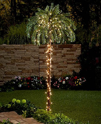 Large Palm Tree with Lights