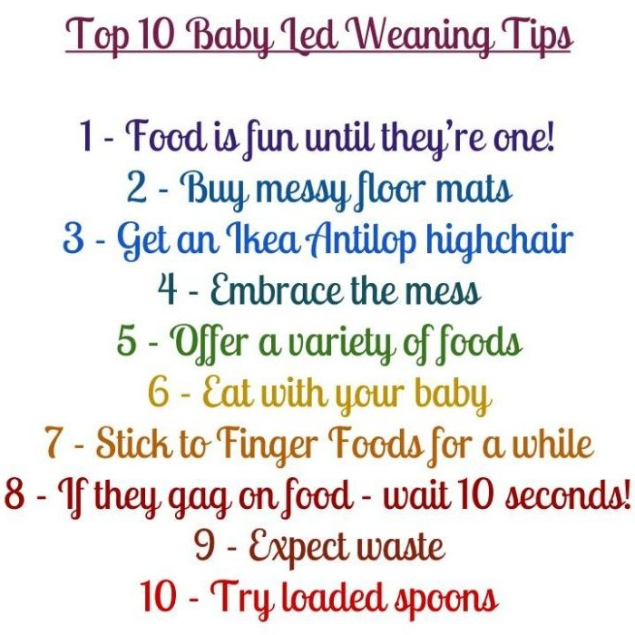 Starting baby led weaning tips and help introducing solid foods to your baby's diet.