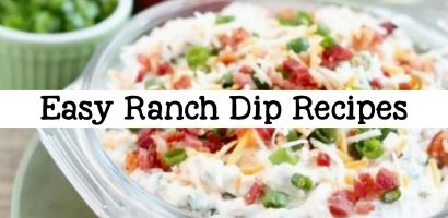 9 Easy Ranch Dip Recipes – Cold Homemade Ranch Veggie Dip Recipe Ideas