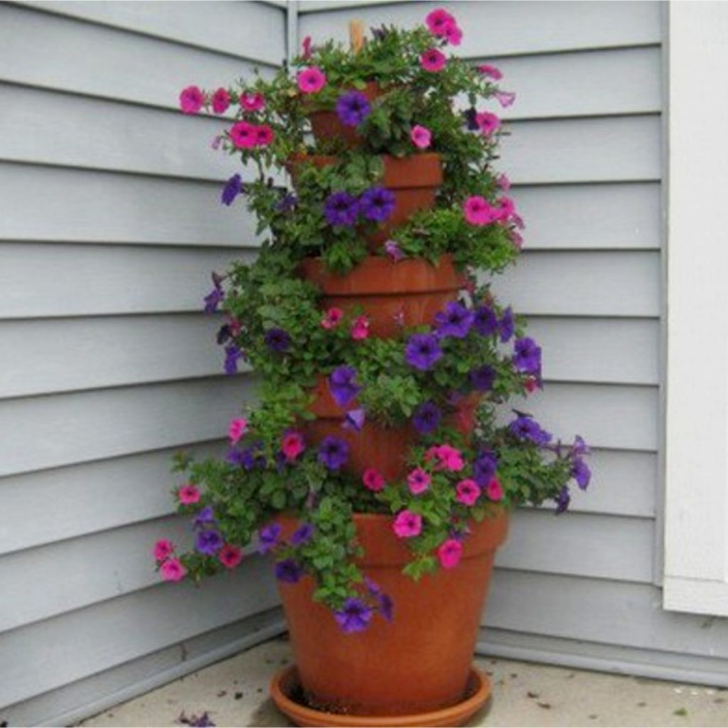 Ideas for clay pots -  front porch idea with clay flower pots
