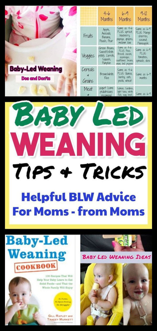 Baby led weaning - Baby Food Schedule for starting baby on solids & baby led weaning. Baby feeding schedule, baby feeding chart, introducing baby food and more BLW - baby led weaning info