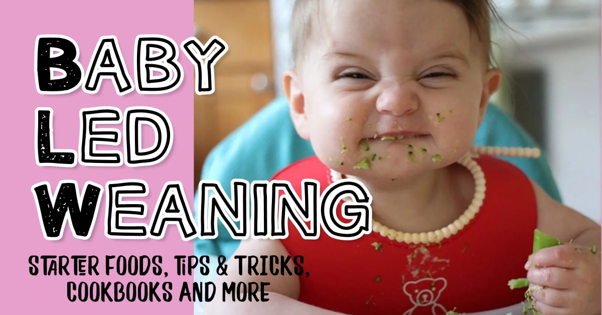 Baby Led Weaning! See baby led weaning charts, starter foods by age, blw recipes and cookbooks, best baby led weaning books and more baby led weaning tips, tricks and ideas