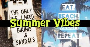 Summertime! Summer Vibes clothing, quotes, memes and Instagram captions we love for the summer months. They may not be summer facts but these are summer vibes we LOVE