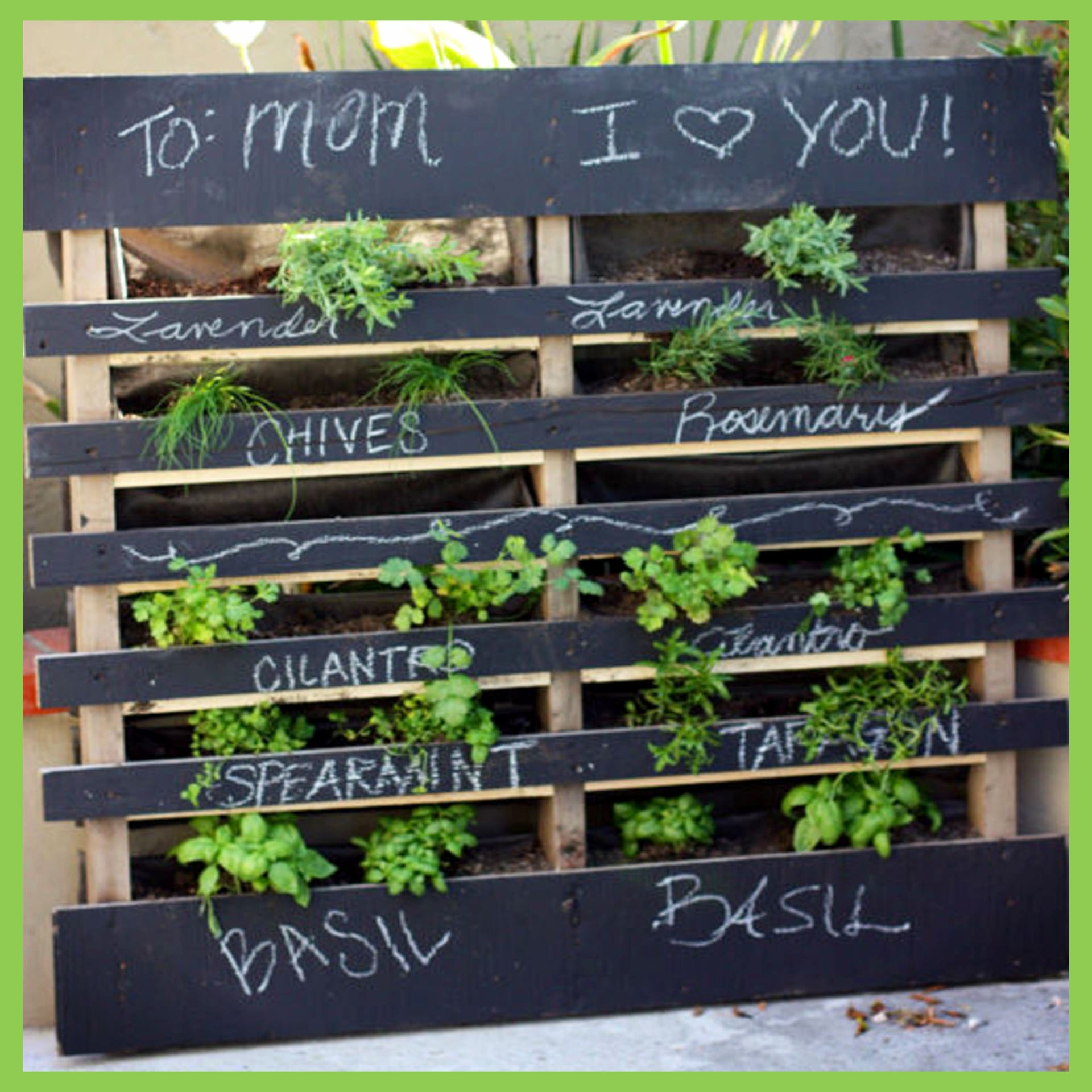 Pallet herb garden - DIY vertical pallet herb or vegetable garden to grow veggies, herbs, strawberry plants and more - easy DIY pallet projects ideas for your garden, backyard, patio, decks or in your house.  How to build a pallet herb garden ( you'll see how easy it is how to make it) - Great DIY gift for mom too!