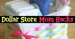 Improve your organizational skills with these organization hacks - Dollar Store Home Organization Hacks - everything from Dollar Store Garage Organization, closet and pantry organization and lots more cheap organization hacks and ideas for small spaces to how to organize school papers - you can make a homemade organizer with bins from a Dollar Store or Dollar Tree near you.
