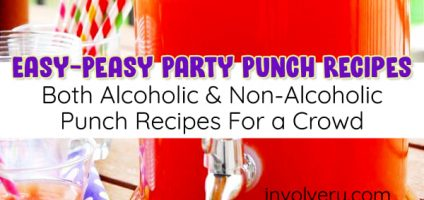 11 Easy Punch Recipes For a Crowd – Both Alcoholic and Non-Alcoholic Party Punch Recipes & Simple Party Drinks